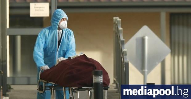 Над 18 милиона са регистрираните случаи на коронавирус в света,