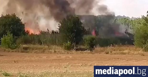 Пожарът, който от два дни бушува край село Лесово, снощи