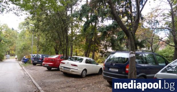 Най-много нарушения за паркиране в зелени площи се установяват в