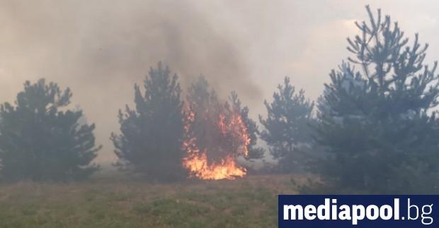 Нови пожари избухнаха в Хасковска област в понеделник, на двете