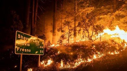 Девет загинали в горските пожари в западната част на САЩ
