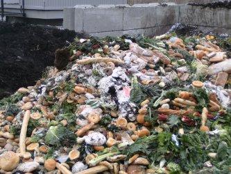 1000 домакинства в София ще събират разделно хранителни отпадъци
