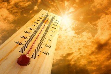 Жълт код за високи температури в 20 области