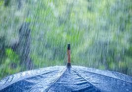 Жълт код за интензивни валежи в 12 области