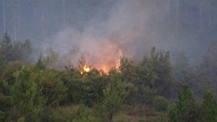Полицията в Сливен задържа мъж за пожара край Селиминово