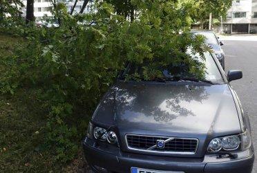 Над 80 000 домакинства без електричество във Финландия заради силна буря