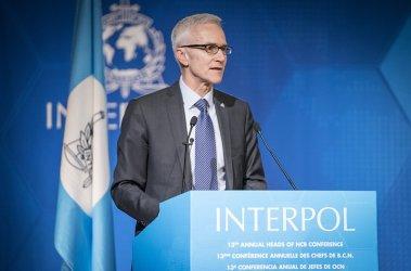 Интерпол: Над 20 000 арестувани за телефонни и онлайн измами в голяма операция