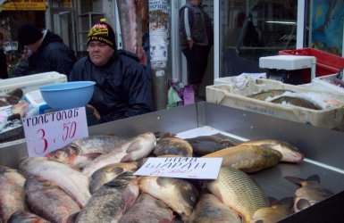 Агенцията по храните започва проверки на рибни борси заради Никулден
