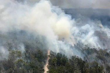 Източна Австралия е обхваната от пожари след горещини през уикенда