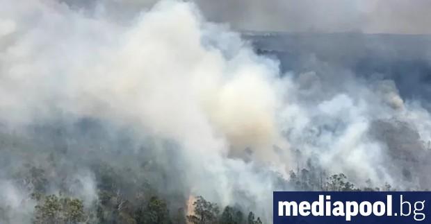 Петдесет и четири горски пожара бушуват към днешния ден на