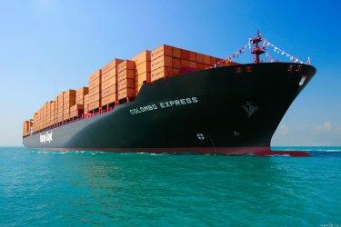 Руски товарен кораб потъна в Черно море край бреговете на Турция