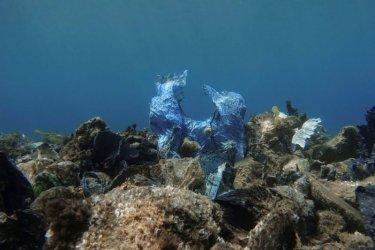 Мексико забрани пластмасата за еднократна употреба