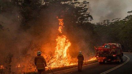 Горски пожар унищожи над 70 къщи край австралийския град Пърт