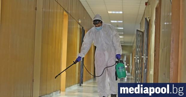 Броят на новите случаи на коронавирусна инфекция остава стабилен вече