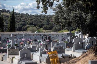 Погребални работници в Рим протестираха заради струпване на ковчези на гробищата