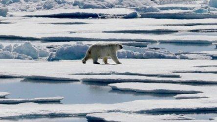 Световните лидери призоваха за общ фронт за борба с глобалното затопляне