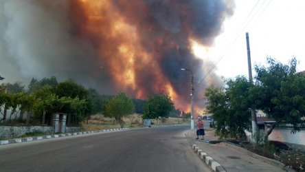 След смъртта на лесничеи в горски пожар се спира чистенето на стърнища