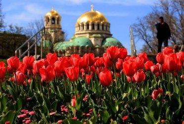 София се бори с Хелзинборг за Зелена столица на Европа през 2023 г.