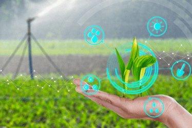 Вместо евромилиони за напояване - фонд за цифрово и зелено земеделие