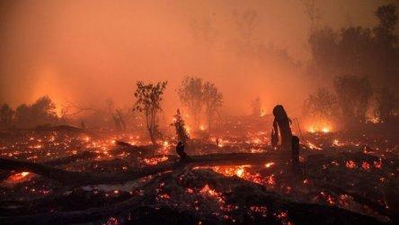 Горски пожар застрашава градове в Монтана, гореща вълна на северозапад в САЩ