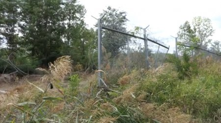 Оградата по границата изпочупена, срязана, обрасла с дървета и вече отговорност на МВР (видео)