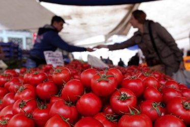 Турция ще отглежда домати при минус 35 градуса