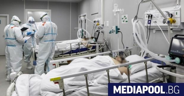 До Коледа смъртните случаи от коронавирус в България може да